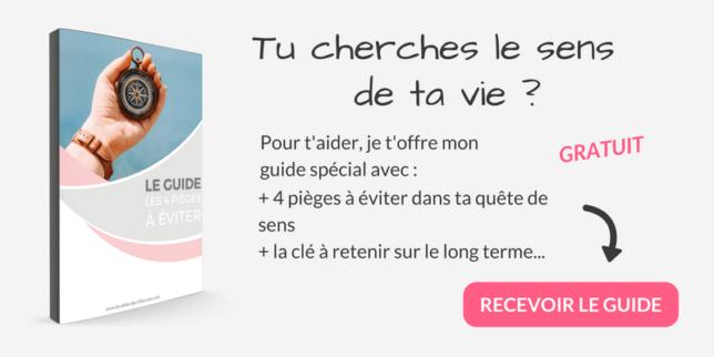 Guide Du Sens