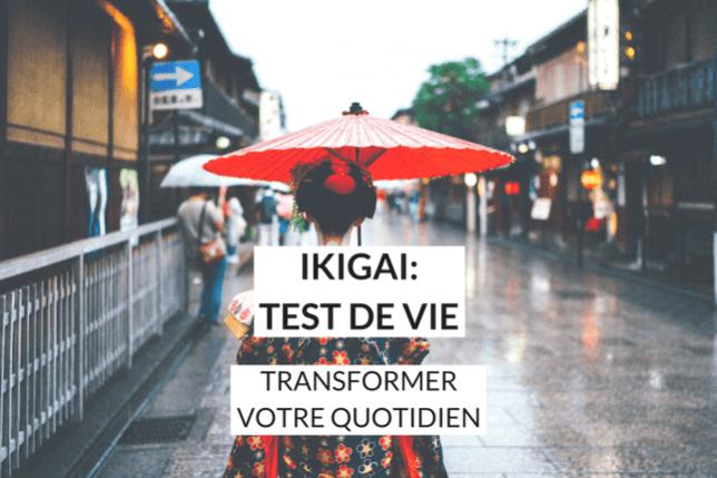 Trouvez votre Ikigai, votre raison de vivre et de vous lever chaque matin, et déplacez des montages sans même vous en rendre compte !
